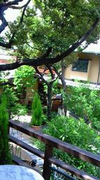 エルガーデン庭.jpg